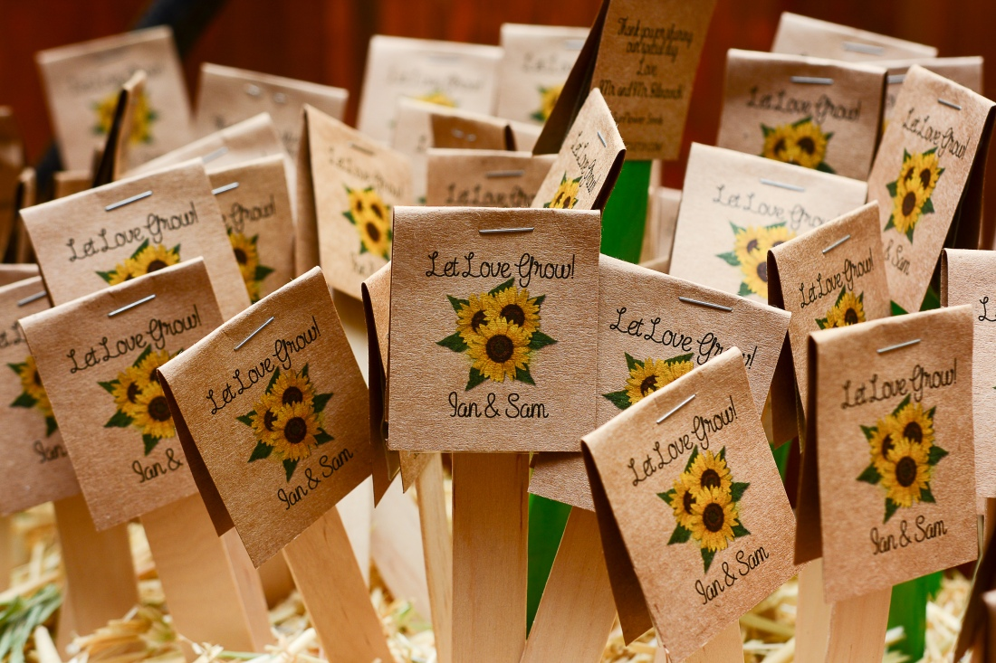 Bilinowich Wedding-261